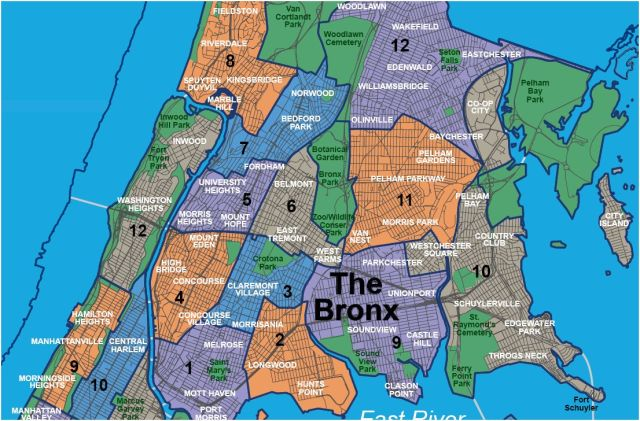 the-bronx2